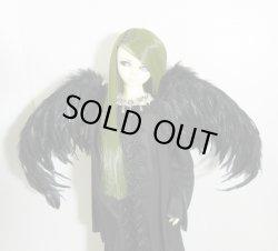 画像1: 「受注」 鳥の羽根のハネ 黒 M